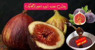 فروش شیره انجیر ارزان قیمت