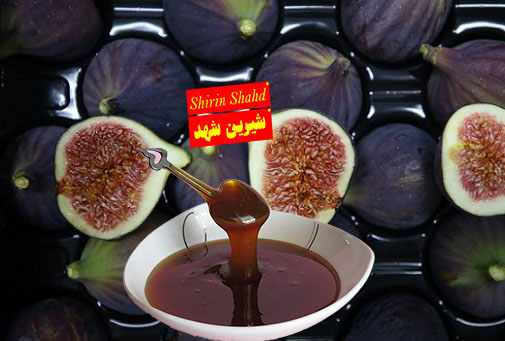 قیمت شیره انجیر گل بهان