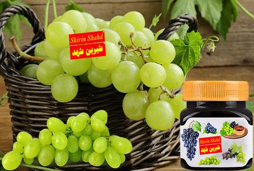 مرکز خرید شیره انگور فخری