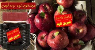 قیمت انواع شیره سیب درختی