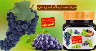 شرکت صادر کننده شیره انگور به روسیه